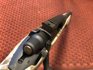 Remington 700 .223R